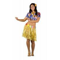 HAWAIANA ADULTA 62080